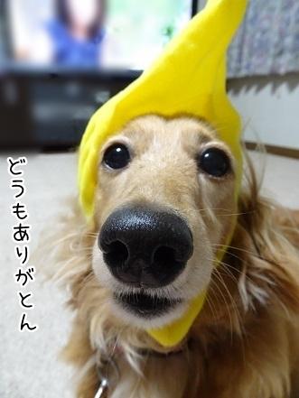 kinako7785.jpg