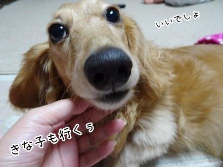 kinako7822.jpg