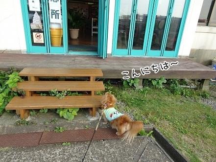 kinako7831.jpg