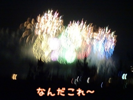 kinako7928.jpg