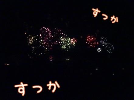 kinako7930.jpg