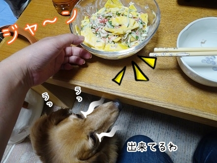 kinako7949.jpg