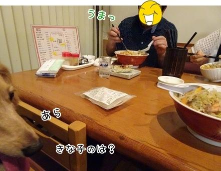 kinako8023.jpg