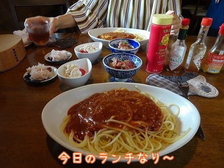 kinako8055.jpg