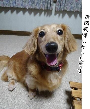 kinako8124.jpg