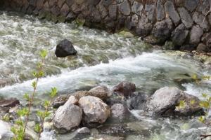 西の河原公園 川
