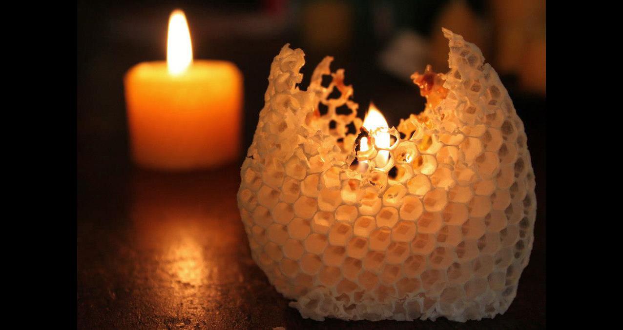 ハチ蜜の森キャンドル4