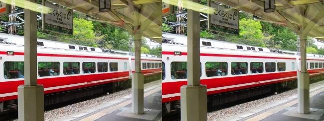 南海高野線 極楽橋駅②(平行法)