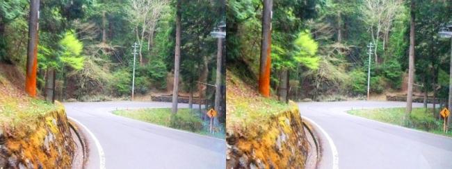 高野山バス道路(平行法)