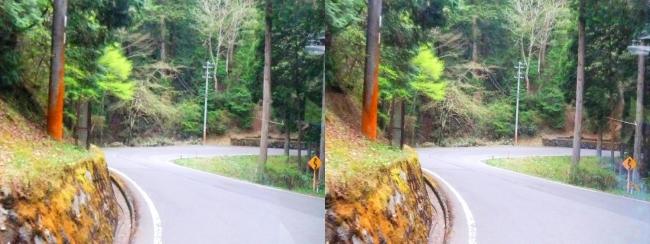 高野山バス道路(交差法)