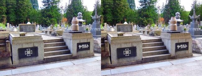 奥之院裏参道③ ヤクルト 企業墓(交差法)