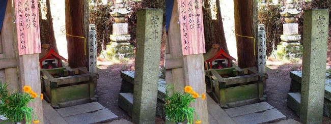 奥之院参道⑭ 姿見の井戸(平行法)
