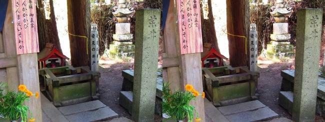 奥之院参道⑭ 姿見の井戸(交差法)