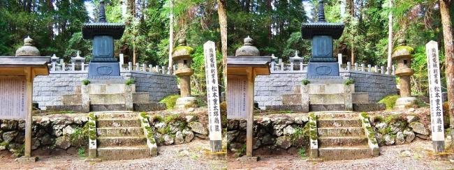 奥之院参道⑪ 南海電鉄創業者 松本重太郎翁の墓(交差法)
