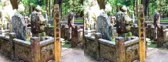 奥之院参道⑩ 明智光秀 墓所(平行法)