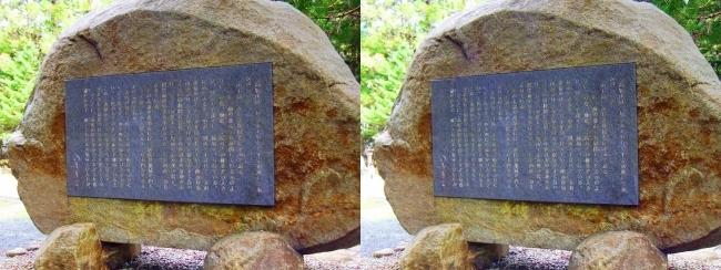 奥之院参道③ 司馬遼太郎文学碑(平行法)