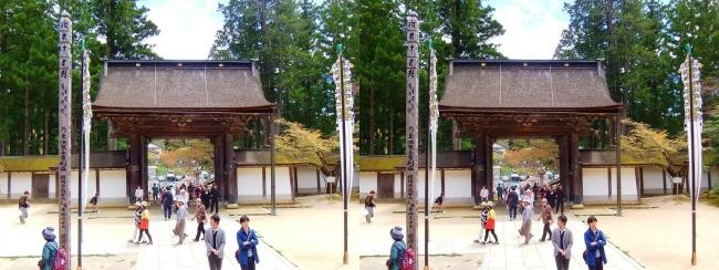 金剛峯寺 主殿からの正門(交差法)