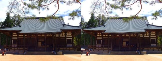 壇上伽藍 金堂(平行法)