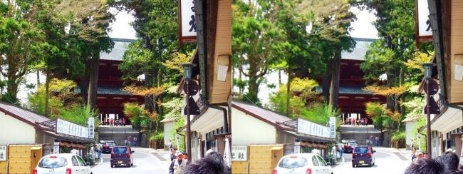 高野山 参詣道路②(平行法)