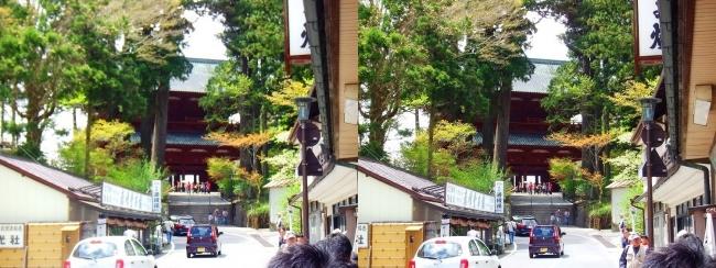 高野山 参詣道路②(交差法)