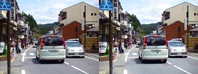 高野山 参詣道路①(平行法)