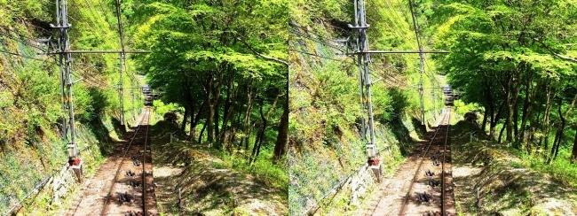 南海高野線 高野山ケーブル②(平行法)