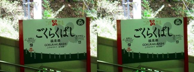 南海鋼索線 極楽橋駅①(平行法)