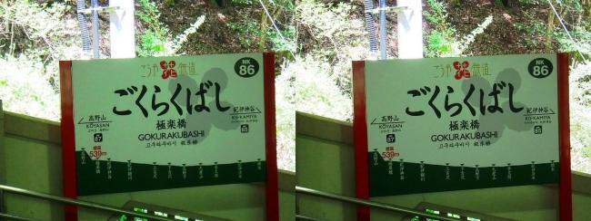 南海鋼索線 極楽橋駅①(交差法)