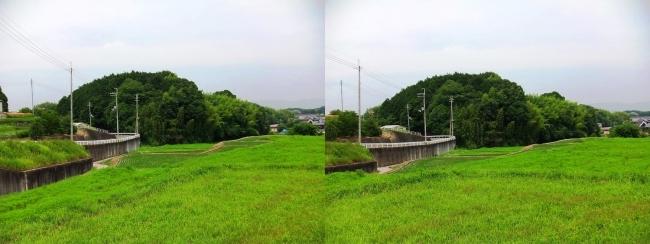 奈良県大和郡山市矢田町①(平行法)