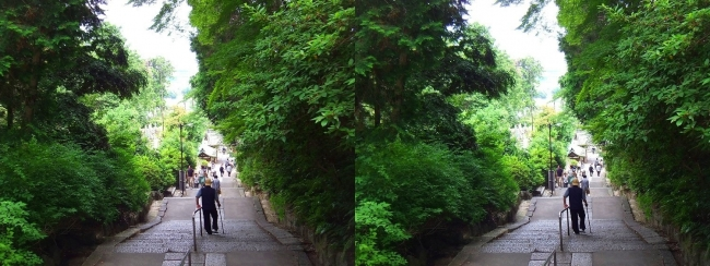 矢田寺 石段③(平行法)