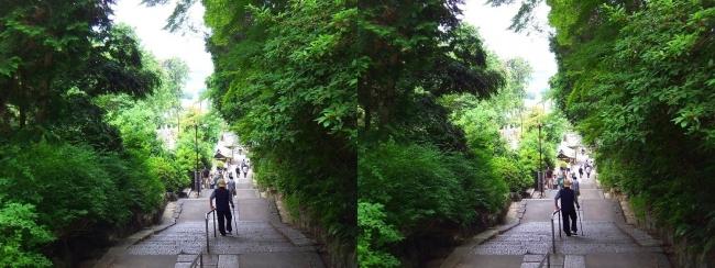 矢田寺 石段③(交差法)