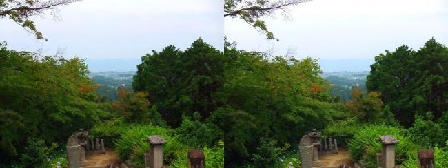 矢田寺 石段 見送り地蔵・江戸力士墓石(平行法)
