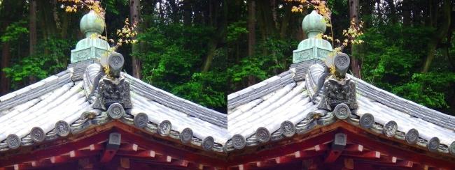 矢田寺 舎利堂③(交差法)
