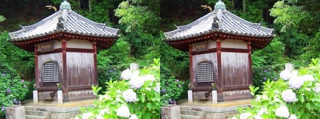 矢田寺 舎利堂②(交差法)
