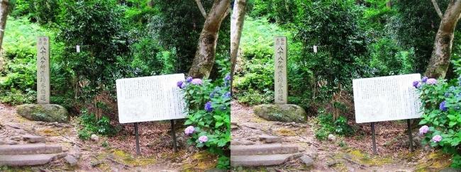 矢田寺 八十八ヶ所霊場参詣道①(平行法)