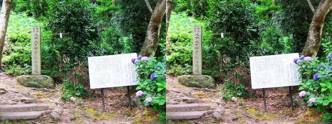 矢田寺 八十八ヶ所霊場参詣道①(交差法)