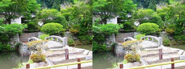 矢田寺 蓮花池(平行法)