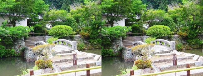 矢田寺 蓮花池(交差法)