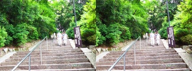 矢田寺 石段②(交差法)
