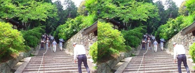 矢田寺 石段①(平行法)