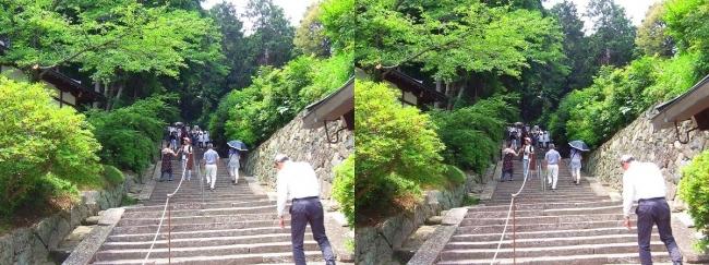 矢田寺 石段①(交差法)