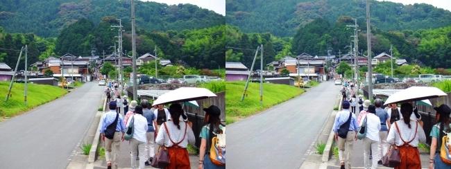 矢田寺に向かう道(平行法)