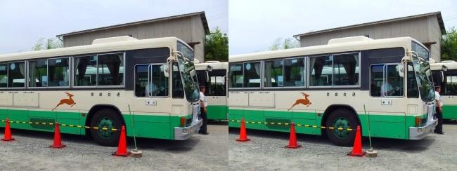 矢田寺行き奈良交通バス②(平行法)