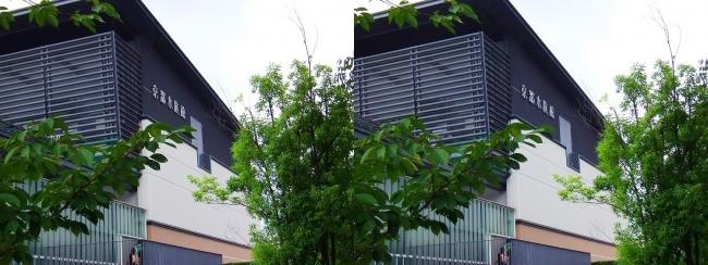 京都水族館 外観②(平行法)