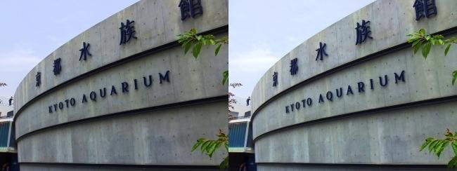 京都水族館 外観①(平行法)