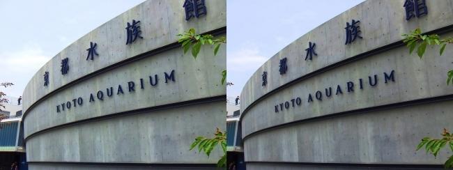 京都水族館 外観①(交差法)