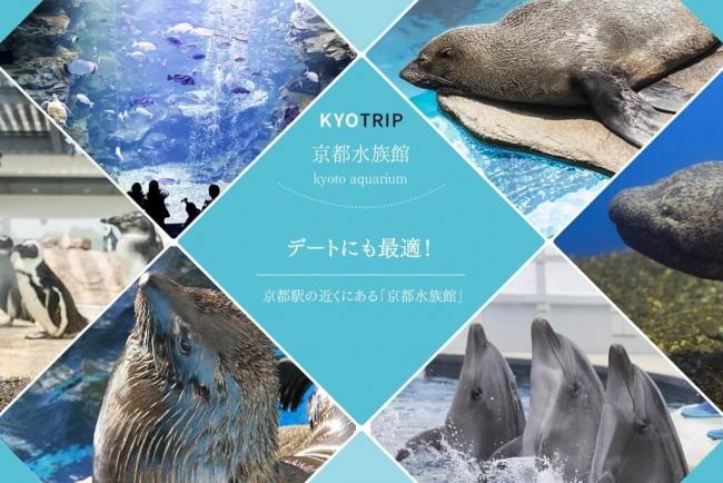 京都駅の近くにある「京都水族館」