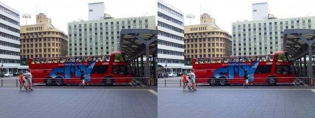 京都定期観光オープントップバス(平行法)