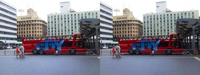 京都定期観光オープントップバス(交差法)