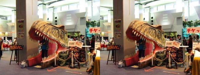 メガ恐竜展2017 恐竜アトラクションコーナー①(交差法)